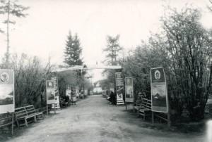 парк 4_22